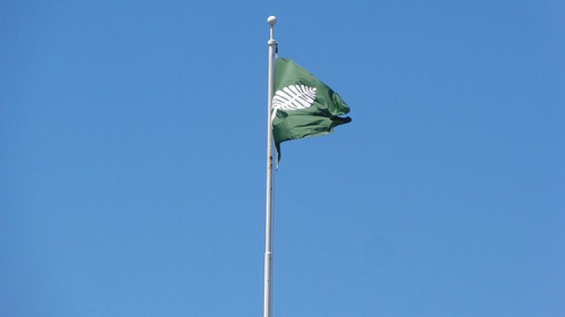 Dartmouth flag